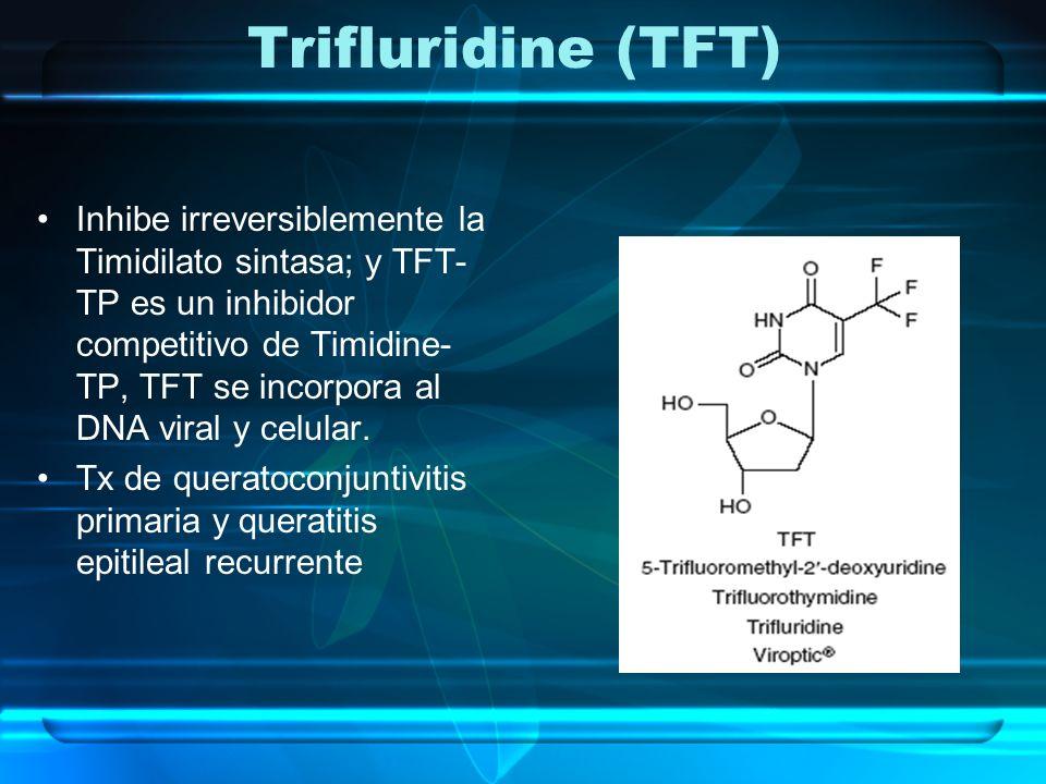 Trifluridine (TFT) Inhibe irreversiblemente la Timidilato sintasa; y TFT- TP es un inhibidor competitivo de Timidine- TP, TFT se incorpora al DNA vira