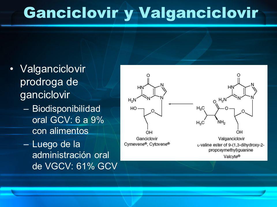 Ganciclovir y Valganciclovir Valganciclovir prodroga de ganciclovir –Biodisponibilidad oral GCV: 6 a 9% con alimentos –Luego de la administración oral