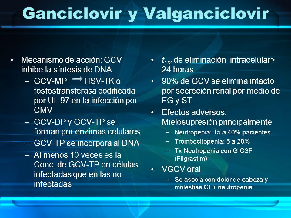 Ganciclovir y Valganciclovir Mecanismo de acción: GCV inhibe la síntesis de DNA –GCV-MP HSV-TK o fosfostransferasa codificada por UL 97 en la infecció