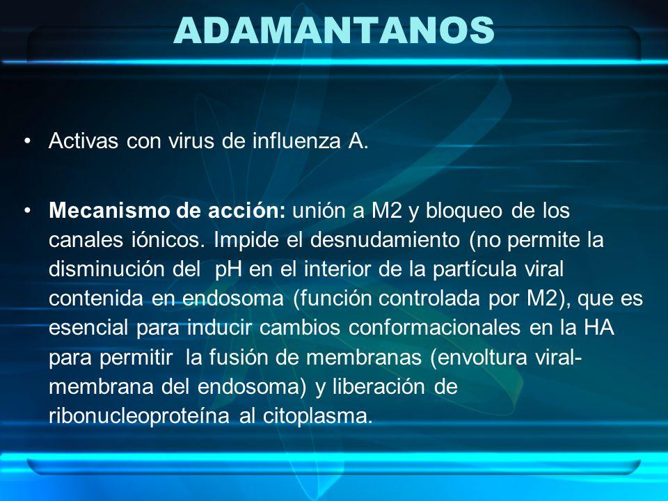 ADAMANTANOS Activas con virus de influenza A. Mecanismo de acción: unión a M2 y bloqueo de los canales iónicos. Impide el desnudamiento (no permite la