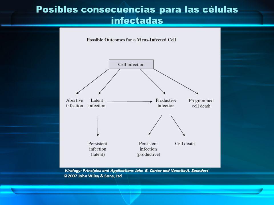 USOS Aprobados Tx de enfermedad aguda no complicada debido a virus de la influenza A y B.
