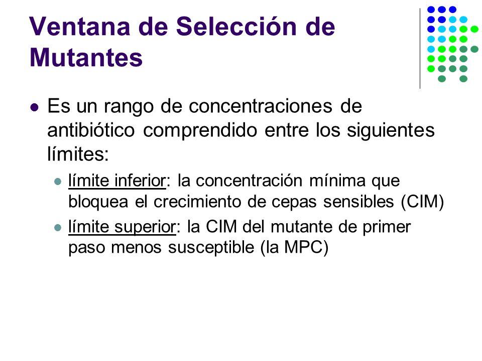 Ventana de Selección de Mutantes Es un rango de concentraciones de antibiótico comprendido entre los siguientes límites: límite inferior: la concentración mínima que bloquea el crecimiento de cepas sensibles (CIM) límite superior: la CIM del mutante de primer paso menos susceptible (la MPC)
