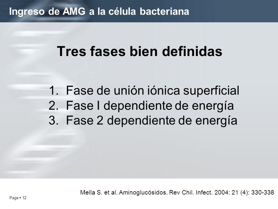 Page 12 Ingreso de AMG a la célula bacteriana Tres fases bien definidas 1. Fase de unión iónica superficial 2. Fase I dependiente de energía 3. Fase 2