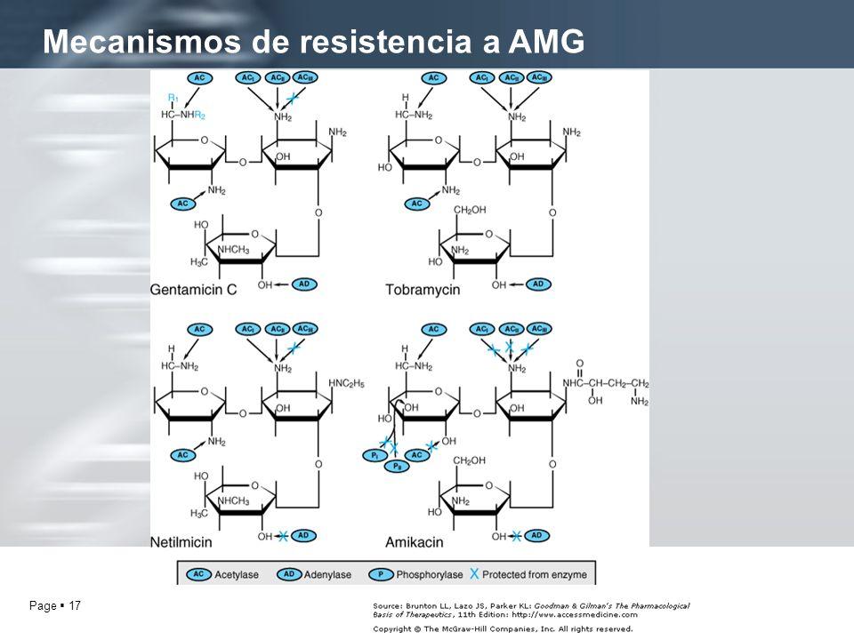 Page 17 Mecanismos de resistencia a AMG