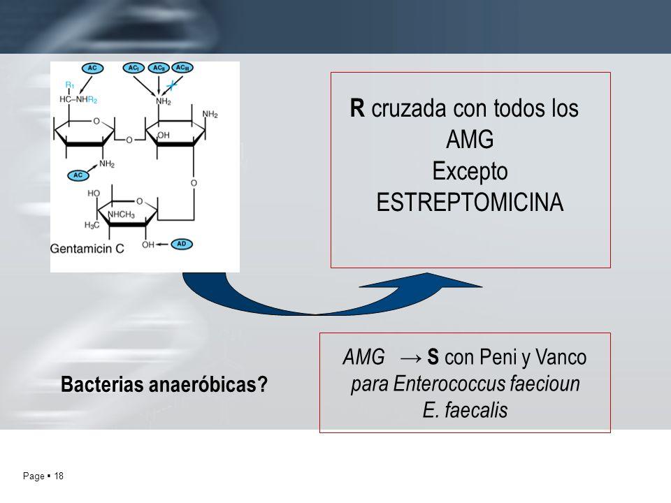 Page 18 R cruzada con todos los AMG Excepto ESTREPTOMICINA Bacterias anaeróbicas? AMG S con Peni y Vanco para Enterococcus faecioun E. faecalis