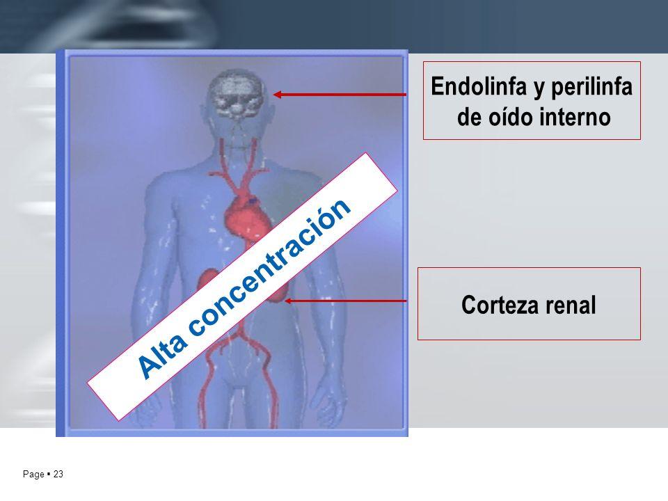 Page 23 Corteza renal Endolinfa y perilinfa de oído interno Alta concentración