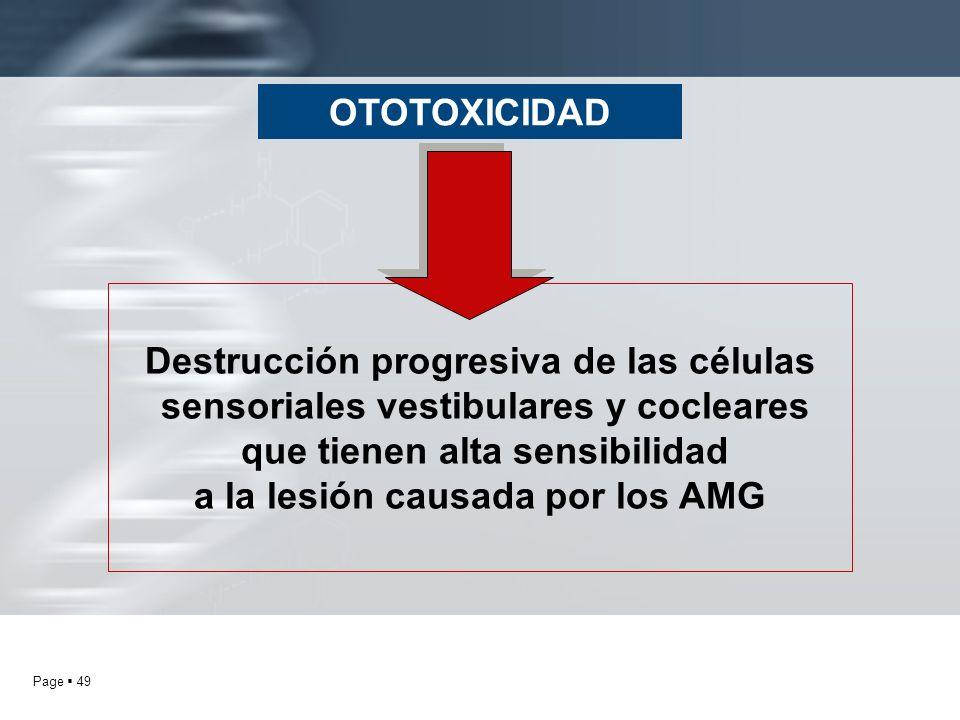 Page 49 OTOTOXICIDAD Destrucción progresiva de las células sensoriales vestibulares y cocleares que tienen alta sensibilidad a la lesión causada por l
