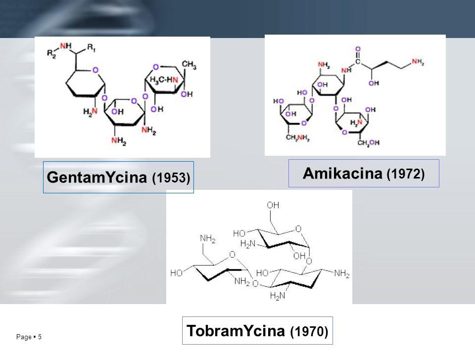 Page 5 GentamYcina (1953) TobramYcina (1970) Amikacina (1972)