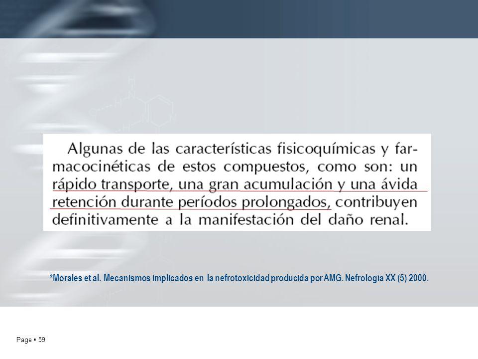 Page 59 *Morales et al. Mecanismos implicados en la nefrotoxicidad producida por AMG. Nefrología XX (5) 2000.