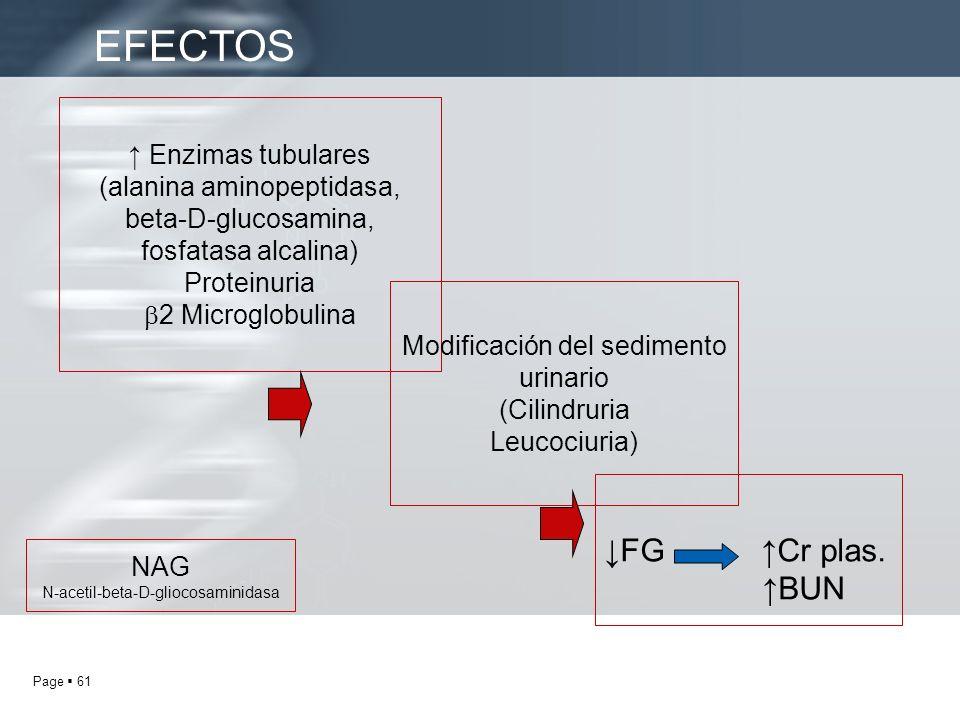 Page 61 Enzimas tubulares (alanina aminopeptidasa, beta-D-glucosamina, fosfatasa alcalina) Proteinuria 2 Microglobulina Modificación del sedimento uri