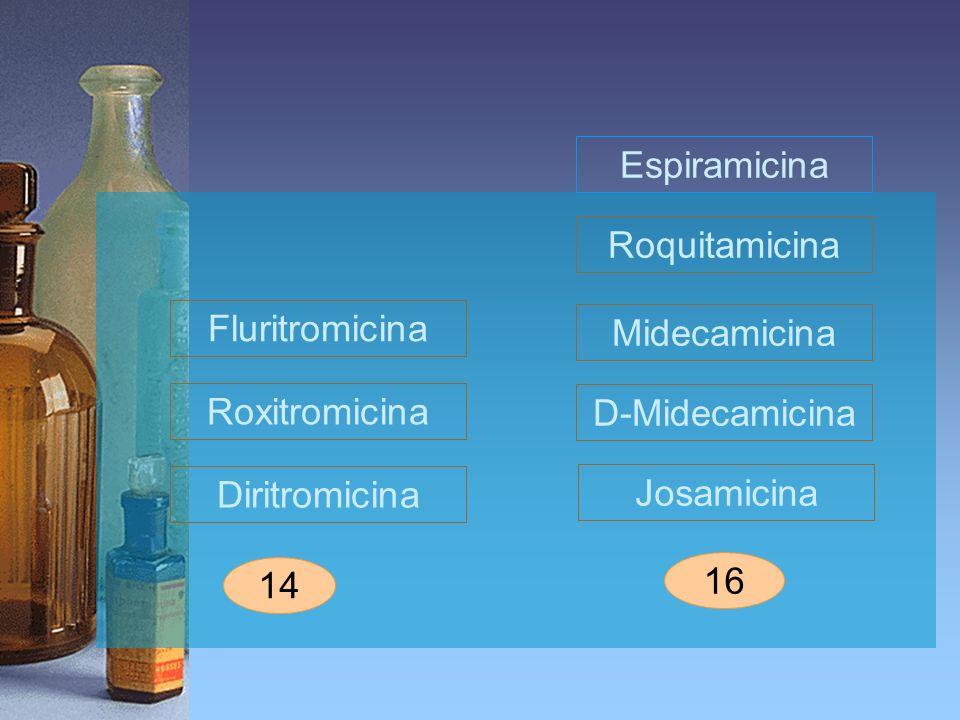 Fluritromicina Josamicina 16 Espiramicina 14 Midecamicina Roquitamicina Diritromicina Roxitromicina D-Midecamicina