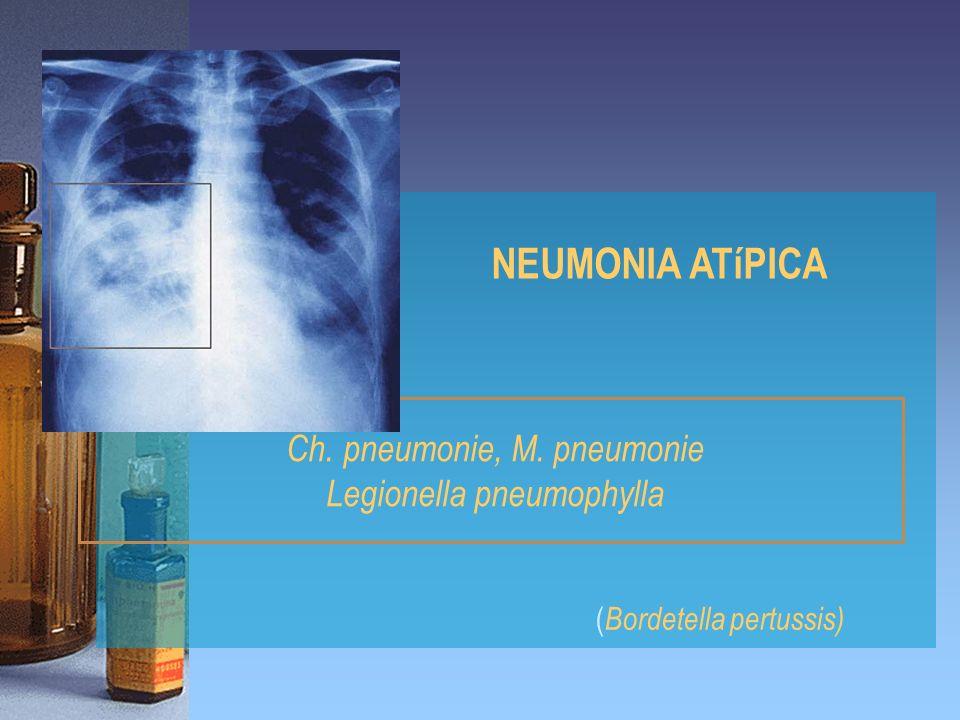 Ch. pneumonie, M. pneumonie Legionella pneumophylla NEUMONIA ATíPICA ( Bordetella pertussis)