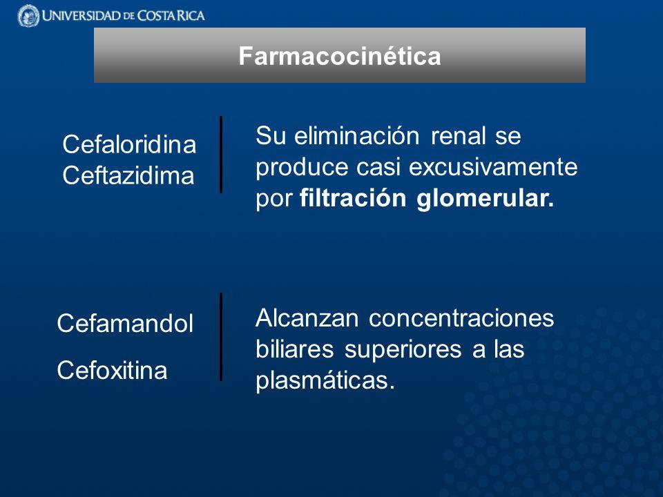 Cefaloridina Ceftazidima Su eliminación renal se produce casi excusivamente por filtración glomerular.