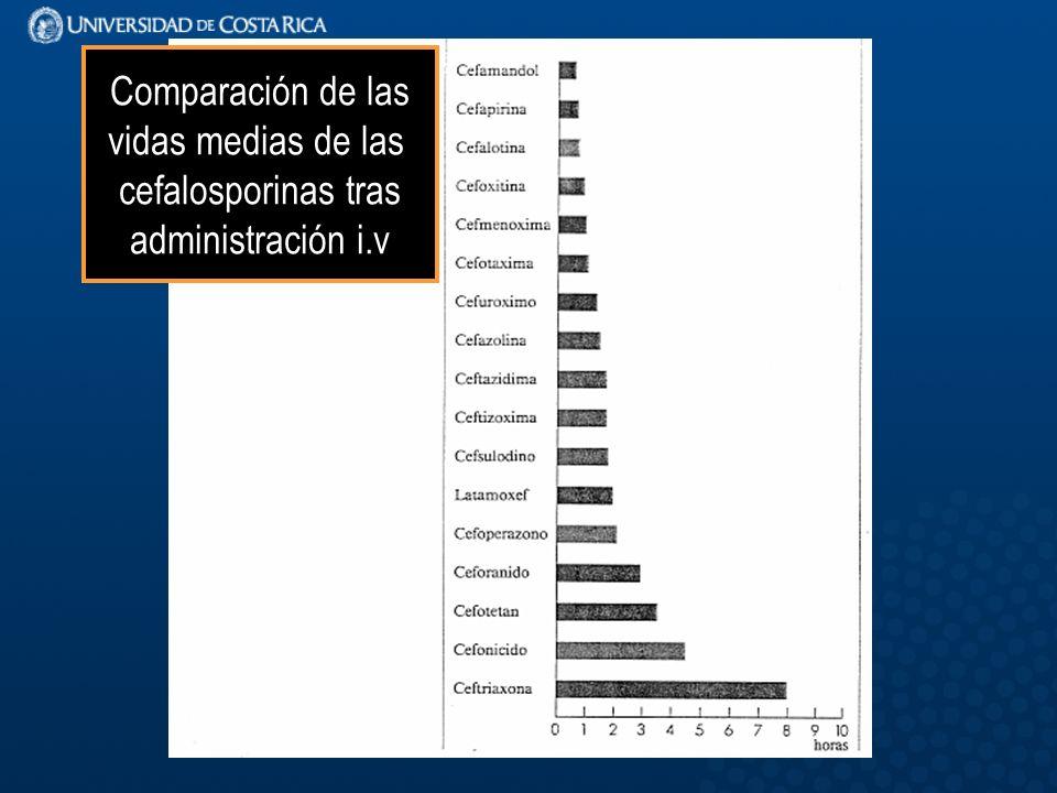 Comparación de las vidas medias de las cefalosporinas tras administración i.v