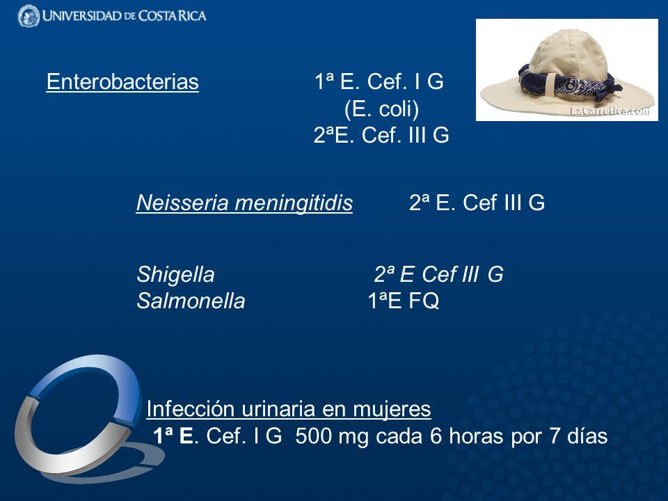 Enterobacterias1ª E.Cef. I G (E. coli) 2ªE. Cef. III G Neisseria meningitidis 2ª E.