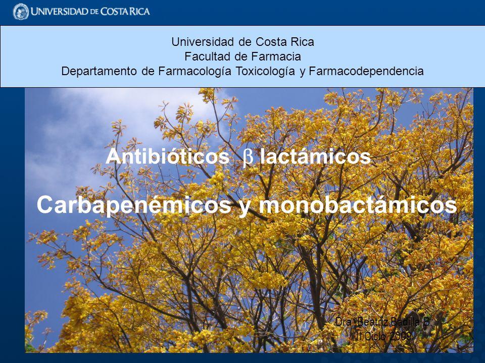 Dra.Beatriz Badilla B.