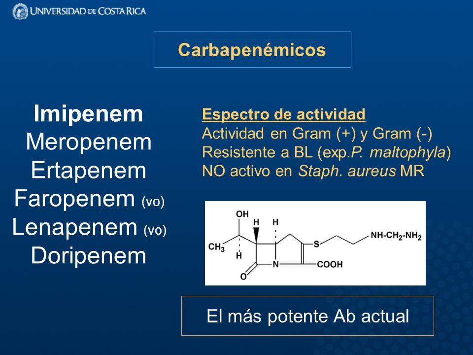 Carbapenémicos Imipenem Meropenem Ertapenem Faropenem (vo) Lenapenem (vo) Doripenem Espectro de actividad Actividad en Gram (+) y Gram (-) Resistente a BL (exp.P.