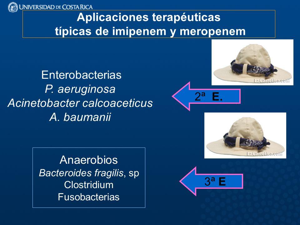 Aplicaciones terapéuticas típicas de imipenem y meropenem Enterobacterias P.