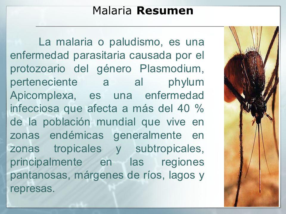 Malaria Resumen La malaria o paludismo, es una enfermedad parasitaria causada por el protozoario del género Plasmodium, perteneciente a al phylum Apic