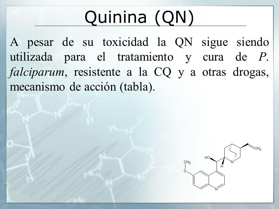 Quinina (QN) A pesar de su toxicidad la QN sigue siendo utilizada para el tratamiento y cura de P. falciparum, resistente a la CQ y a otras drogas, me
