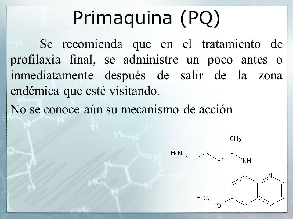 Primaquina (PQ) Se recomienda que en el tratamiento de profilaxia final, se administre un poco antes o inmediatamente después de salir de la zona endé