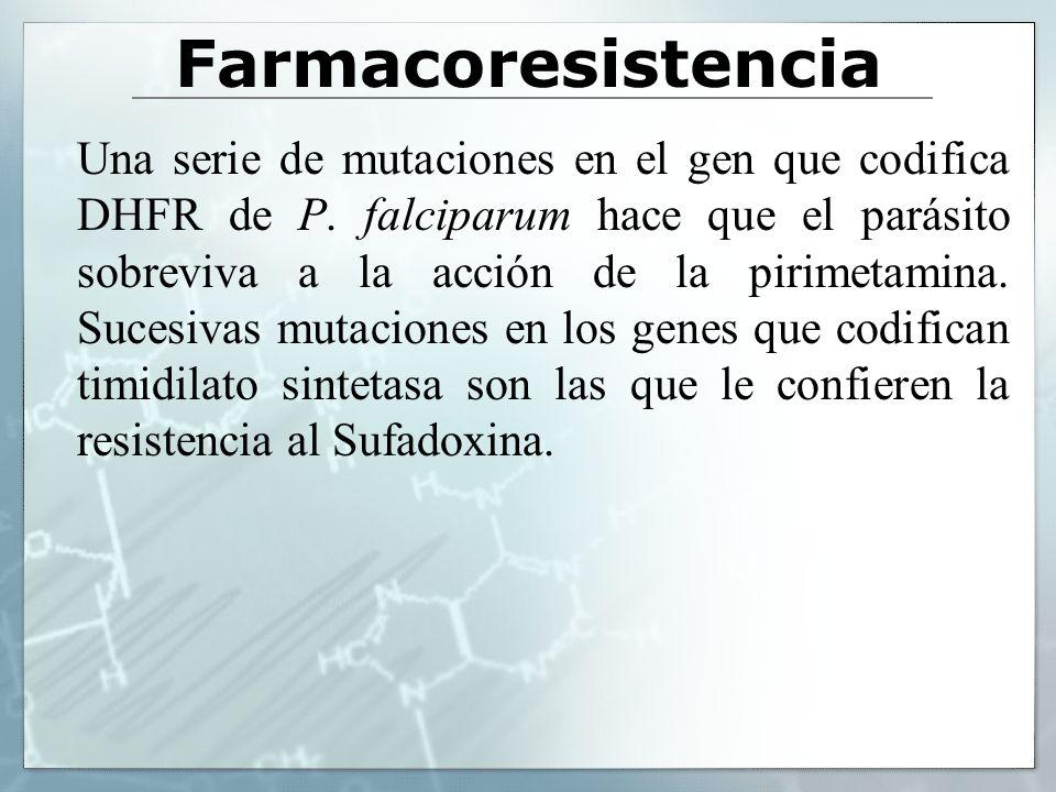 Farmacoresistencia Una serie de mutaciones en el gen que codifica DHFR de P. falciparum hace que el parásito sobreviva a la acción de la pirimetamina.