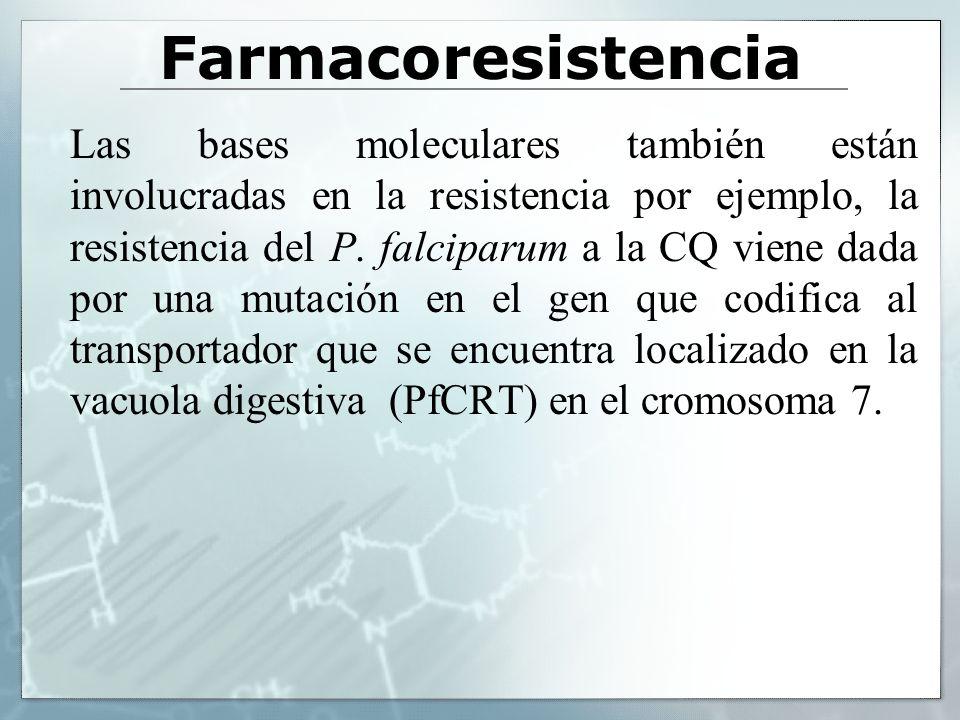 Farmacoresistencia Las bases moleculares también están involucradas en la resistencia por ejemplo, la resistencia del P. falciparum a la CQ viene dada