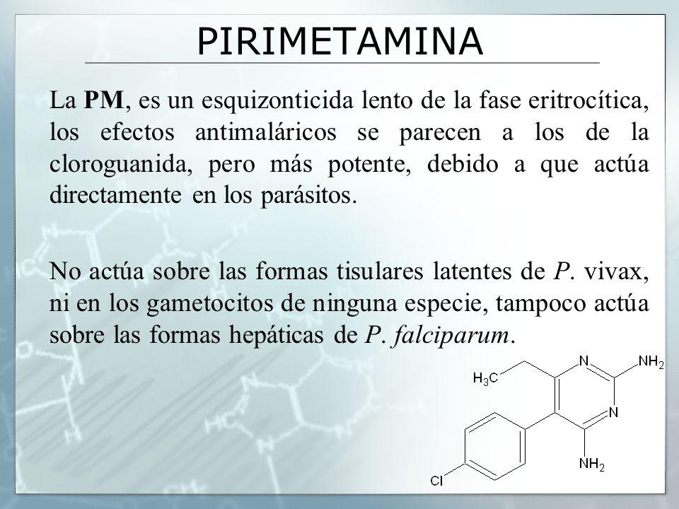 PIRIMETAMINA La PM, es un esquizonticida lento de la fase eritrocítica, los efectos antimaláricos se parecen a los de la cloroguanida, pero más potent