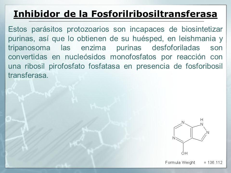 Inhibidor de la Fosforilribosiltransferasa Estos parásitos protozoarios son incapaces de biosintetizar purinas, así que lo obtienen de su huésped, en