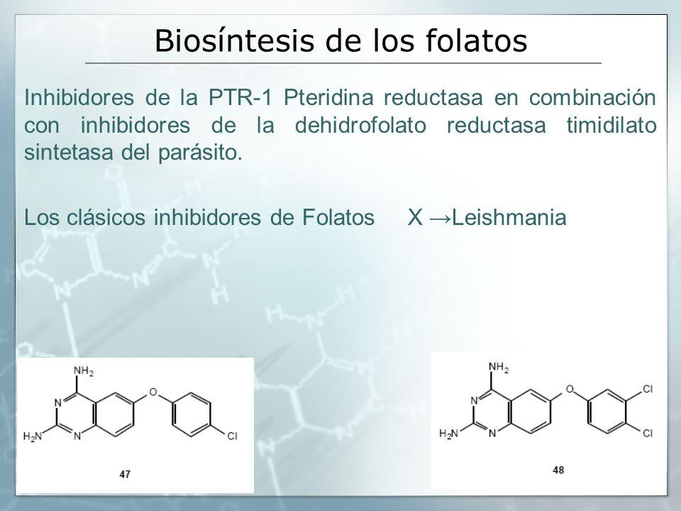 Biosíntesis de los folatos Inhibidores de la PTR-1 Pteridina reductasa en combinación con inhibidores de la dehidrofolato reductasa timidilato sinteta