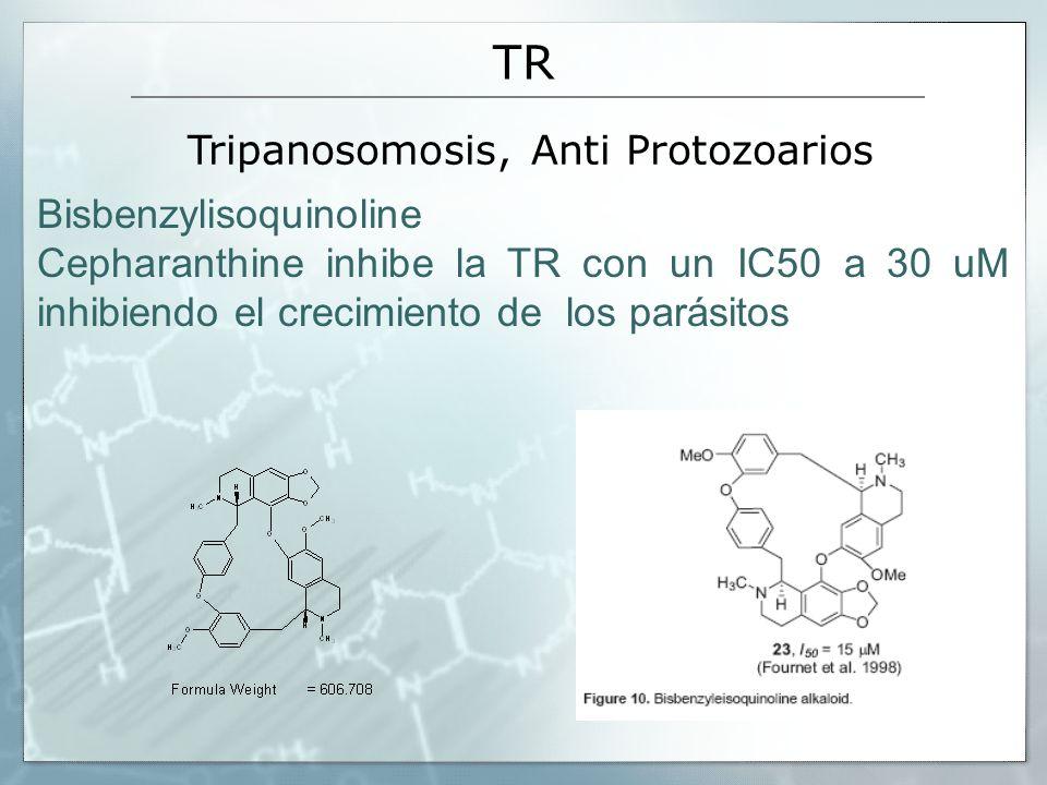 TR Bisbenzylisoquinoline Cepharanthine inhibe la TR con un IC50 a 30 uM inhibiendo el crecimiento de los parásitos Tripanosomosis, Anti Protozoarios