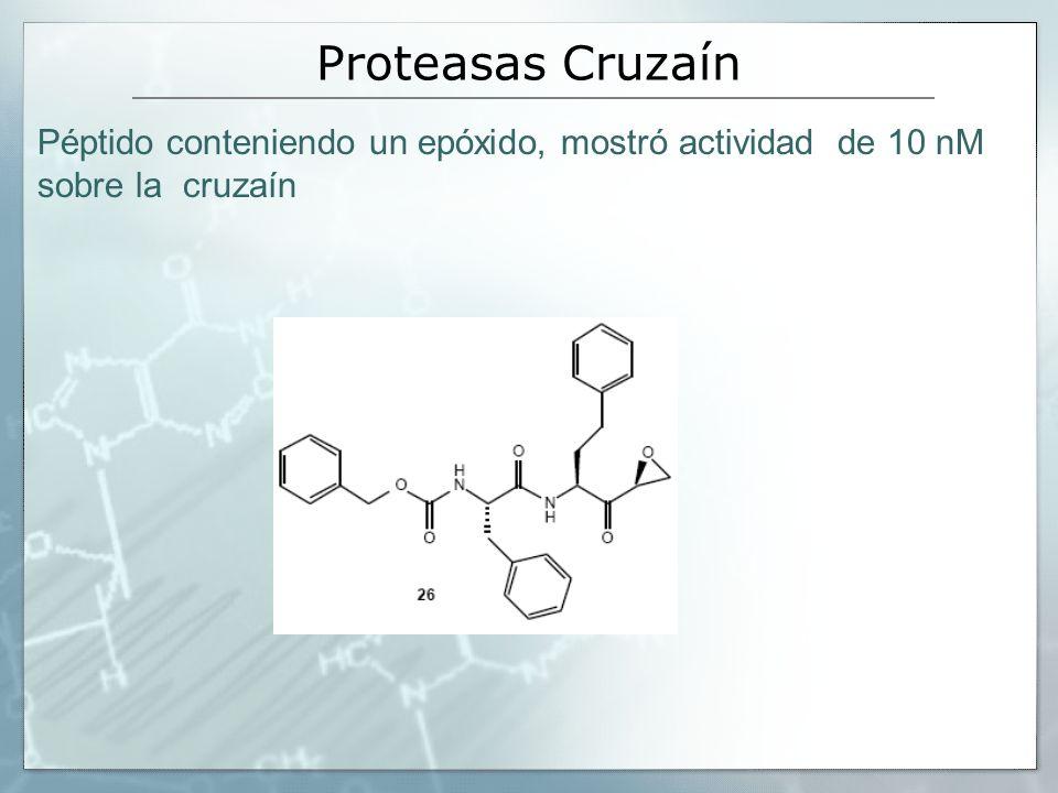 Péptido conteniendo un epóxido, mostró actividad de 10 nM sobre la cruzaín Proteasas Cruzaín