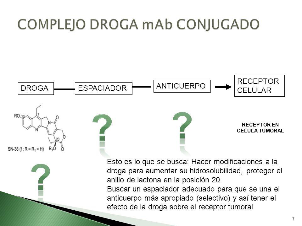 7 DROGA ANTICUERPO ESPACIADOR RECEPTOR CELULAR RECEPTOR EN CELULA TUMORAL Esto es lo que se busca: Hacer modificaciones a la droga para aumentar su hi