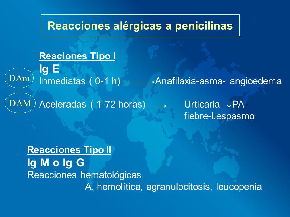Reacciones alérgicas a penicilinas Reaciones Tipo I Ig E Inmediatas ( 0-1 h)Anafilaxia-asma- angioedema Aceleradas ( 1-72 horas)Urticaria- PA- fiebre-