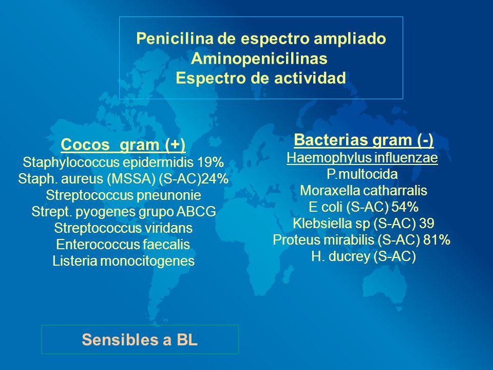 Penicilina de espectro ampliado Aminopenicilinas Espectro de actividad Cocos gram (+) Staphylococcus epidermidis 19% Staph. aureus (MSSA) (S-AC)24% St