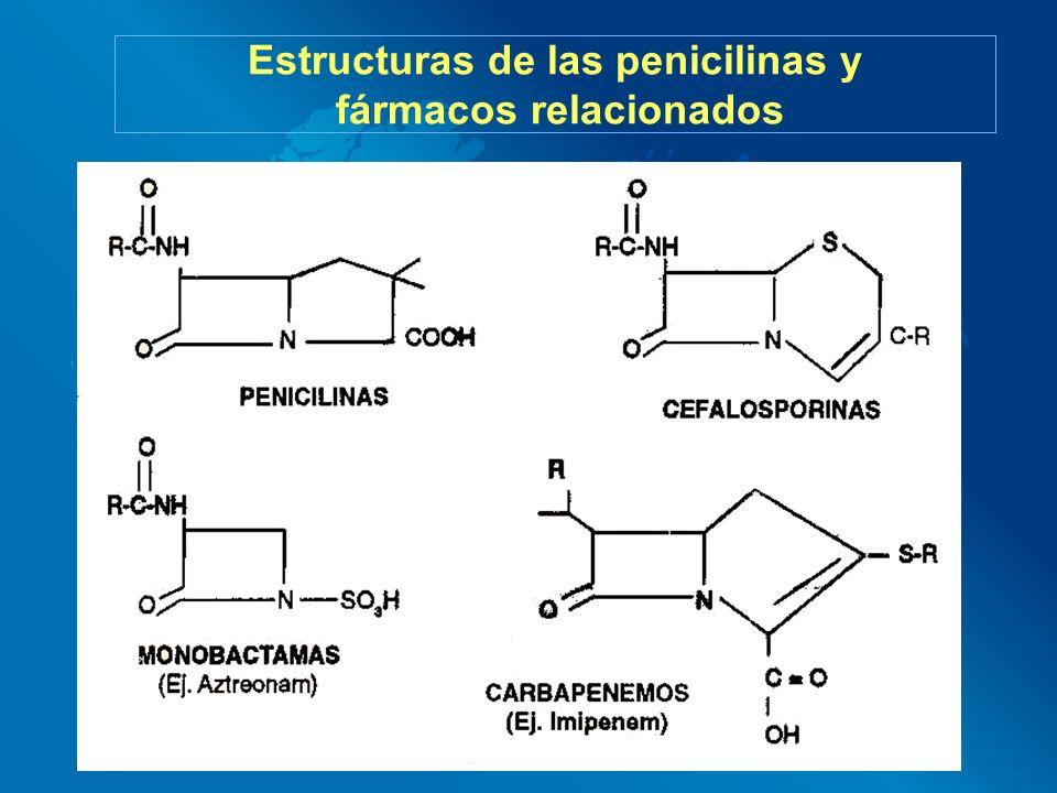 Estructuras de las penicilinas y fármacos relacionados