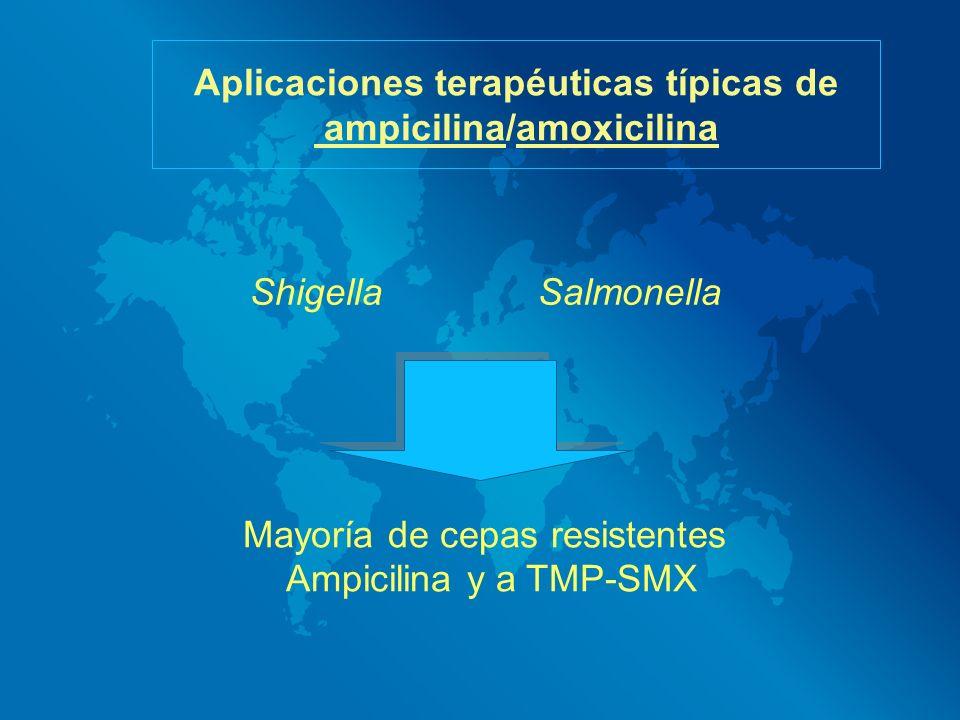 Aplicaciones terapéuticas típicas de ampicilina/amoxicilina Shigella Salmonella Mayoría de cepas resistentes Ampicilina y a TMP-SMX
