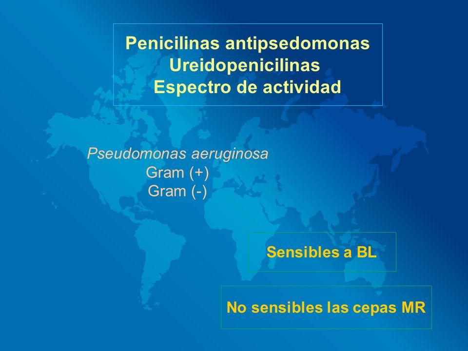 Penicilinas antipsedomonas Ureidopenicilinas Espectro de actividad Pseudomonas aeruginosa Gram (+) Gram (-) Sensibles a BL No sensibles las cepas MR