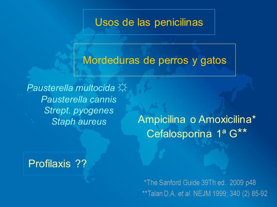 Usos de las penicilinas Mordeduras de perros y gatos Pausterella multocida Pausterella cannis Strept. pyogenes Staph aureus Ampicilina o Amoxicilina*