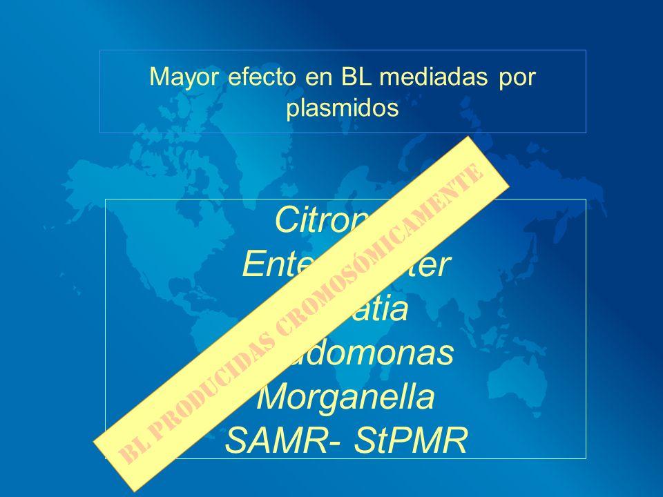 Mayor efecto en BL mediadas por plasmidos Citronela Enterobacter Serratia Pseudomonas Morganella SAMR- StPMR BL producidas cromosómicamente