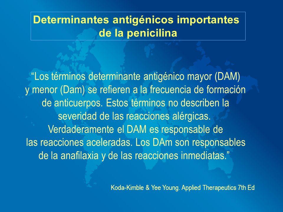 Determinantes antigénicos importantes de la penicilina Los términos determinante antigénico mayor (DAM) y menor (Dam) se refieren a la frecuencia de f