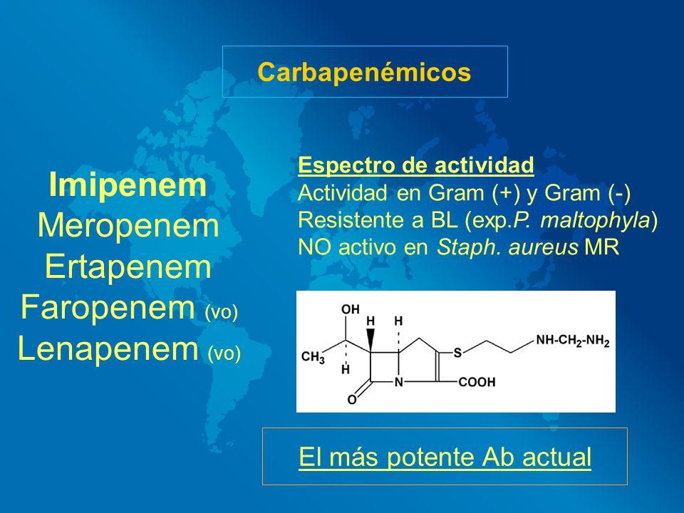 Carbapenémicos Imipenem Meropenem Ertapenem Faropenem (vo) Lenapenem (vo) Espectro de actividad Actividad en Gram (+) y Gram (-) Resistente a BL (exp.