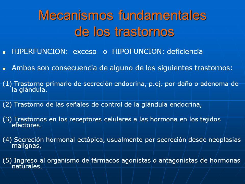 HORMONA PRIMARIA HORMONAS REGULADORAS EFECTOS SOBRE TEJIDO DIANA Deficit 1arioDAD Deficit 2darioDDD Exceso 1arioADA Exceso 2darioAAA Resistencia de tejidos diana AAD Patrones Comunes de las enfermedades endocrinas