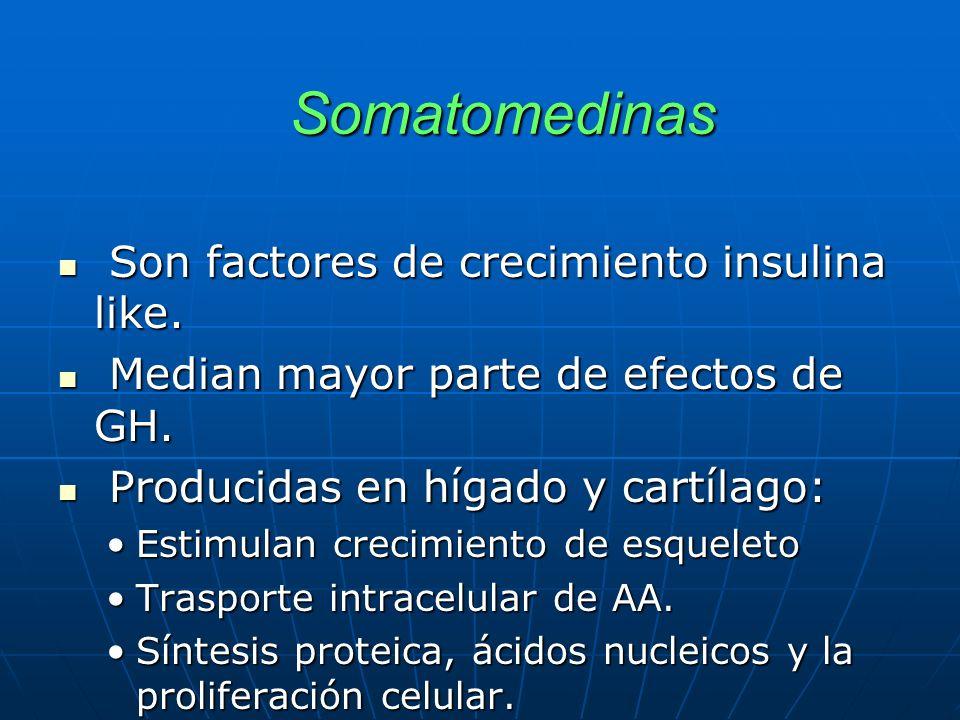 ADENOHIPOFISIS Preparados comerciales: Gonadotropinas ADENOHIPOFISIS Preparados comerciales: Gonadotropinas 2.- GONADOTROPINAS: - Gonadotropina Humana Coriónica (HCG) CHORAGEN® - Gonadotropina Humana Coriónica (HCG) CHORAGEN® Uso : Inducción de ovulación (infertilidad), aumentar testosterona y estimular espermatogénesis en casos de criptorquidia o hipogonadismo hipogonadotrópico.