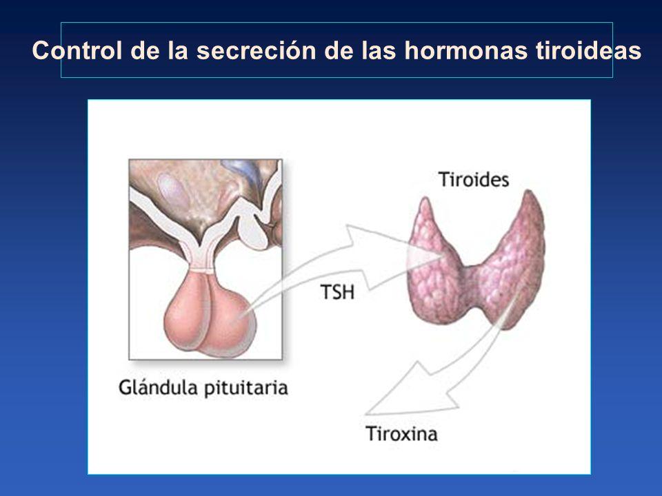 Control de la secreción de las hormonas tiroideas