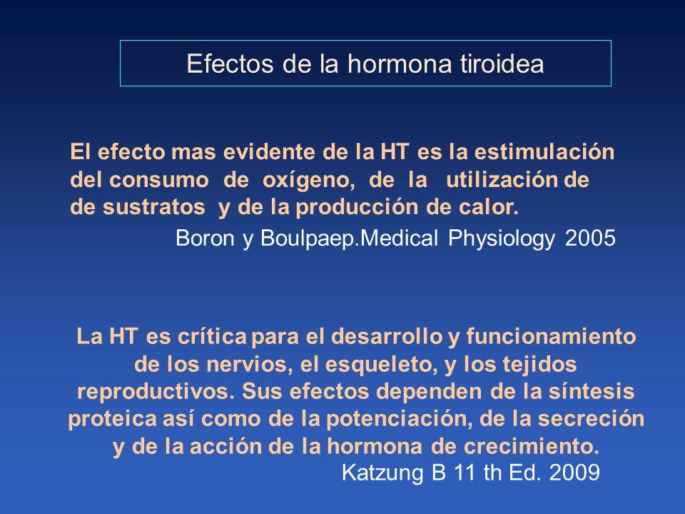 Efectos de la hormona tiroidea El efecto mas evidente de la HT es la estimulación del consumo de oxígeno, de la utilización de de sustratos y de la pr