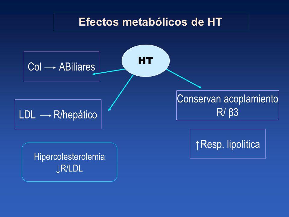 Efectos metabólicos de HT Col ABiliares LDL R/hepático Resp. lipolìtica Conservan acoplamiento R/ β3 HT Hipercolesterolemia R/LDL