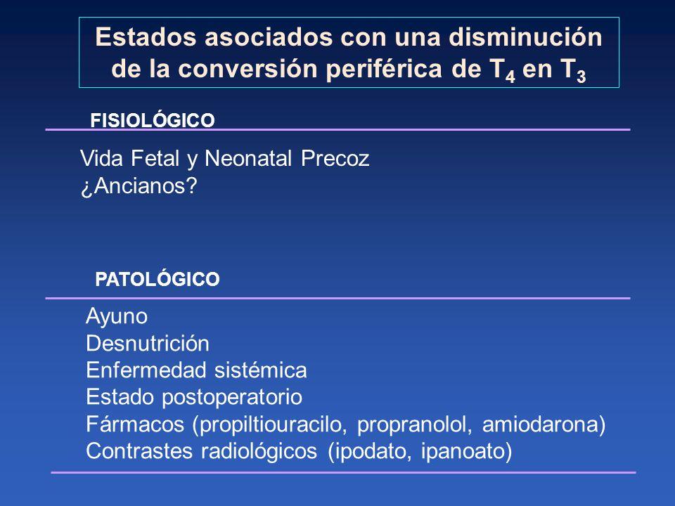 Estados asociados con una disminución de la conversión periférica de T 4 en T 3 FISIOLÓGICO Vida Fetal y Neonatal Precoz ¿Ancianos? PATOLÓGICO Ayuno D
