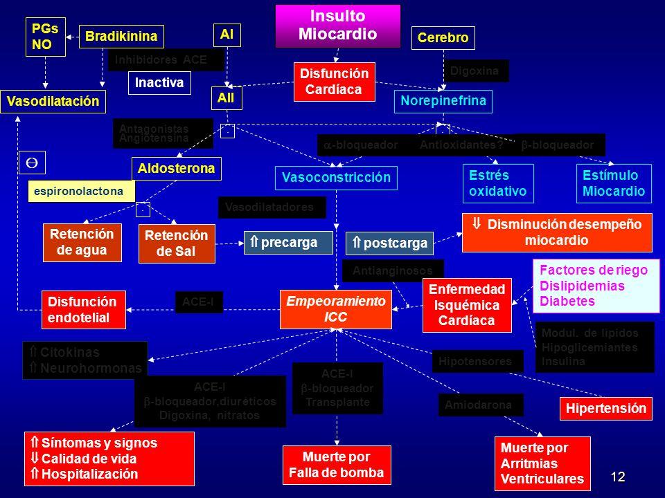 12 Modul. de lípidos Hipoglicemiantes Insulina espironolactona PGs NO Bradikinina AI AII Insulto Miocardio Cerebro Disfunción Cardíaca Norepinefrina I