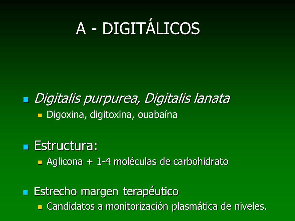 A - DIGITÁLICOS Digitalis purpurea, Digitalis lanata Digitalis purpurea, Digitalis lanata Digoxina, digitoxina, ouabaína Estructura: Estructura: Aglic